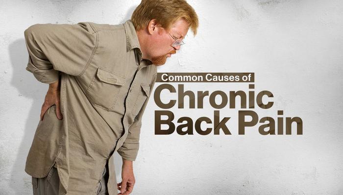 chronic back pain essay