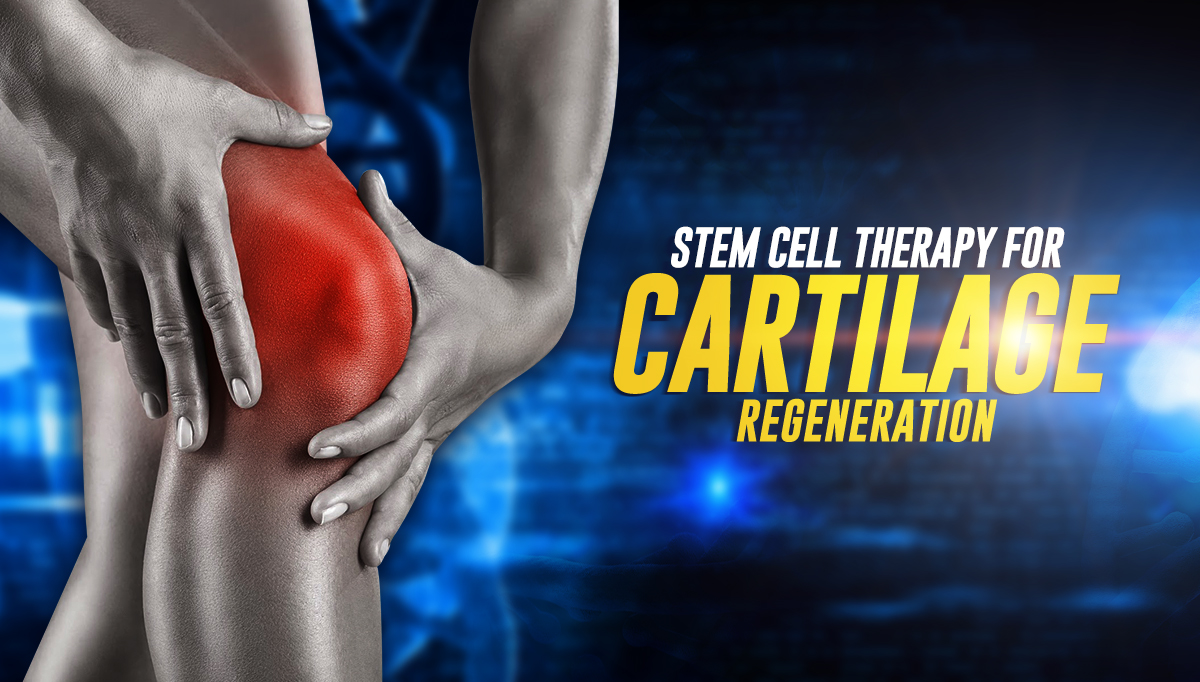 stem cell therapy for cartilage degeneration knee pain joints